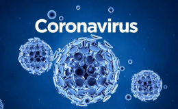 Corona Virüs – Covid19